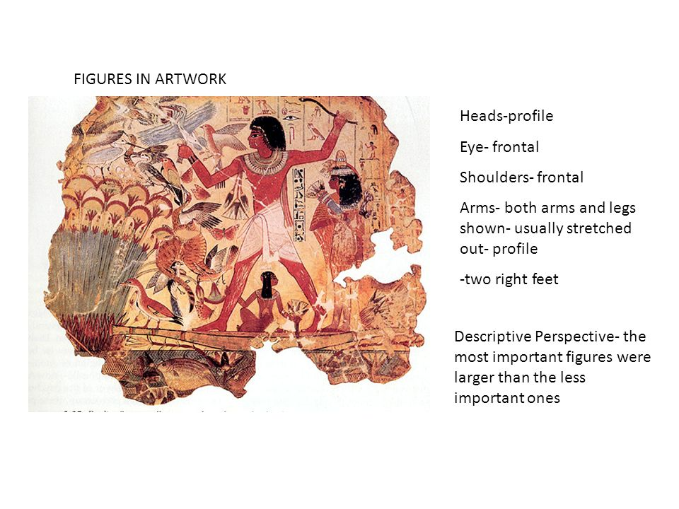 FIGURES IN ARTWORK Heads-profile Eye- frontal Shoulders- frontal Arms- both arms and legs shown- usually stretched out- profile -two right feet Descri