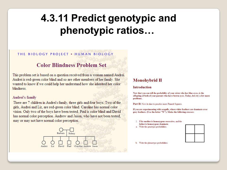 4.3.11 Predict genotypic and phenotypic ratios…