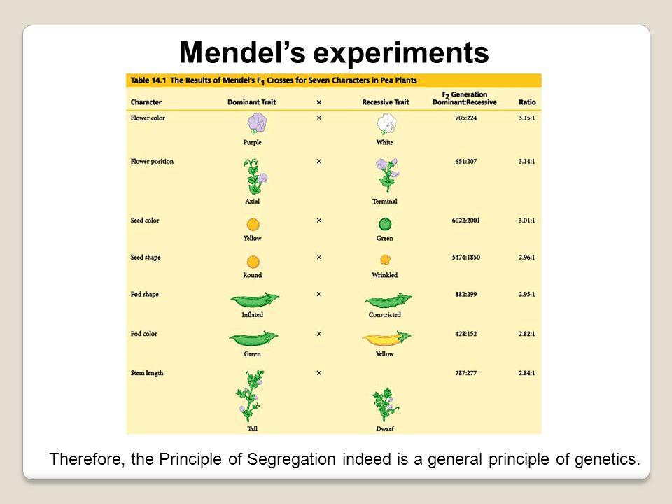 Mendels conclusions: 1.Inheritance is not blended.