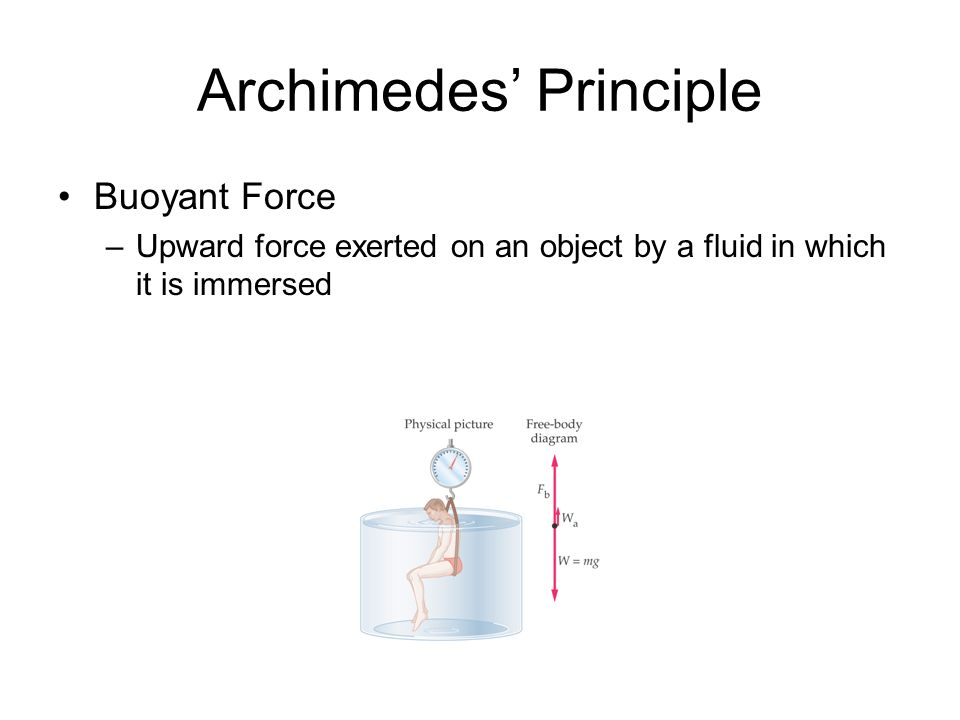 Archimedes Principle Buoyant Force –Upward force exerted on an object by a fluid in which it is immersed
