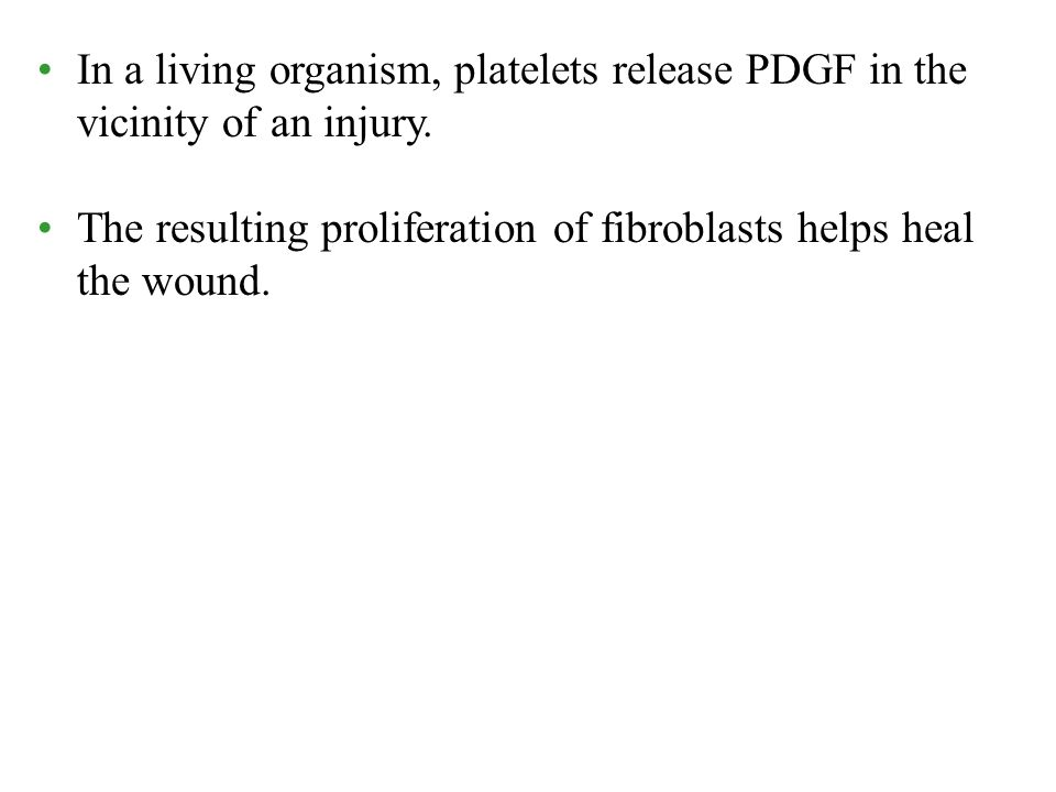 In a living organism, platelets release PDGF in the vicinity of an injury. The resulting proliferation of fibroblasts helps heal the wound.