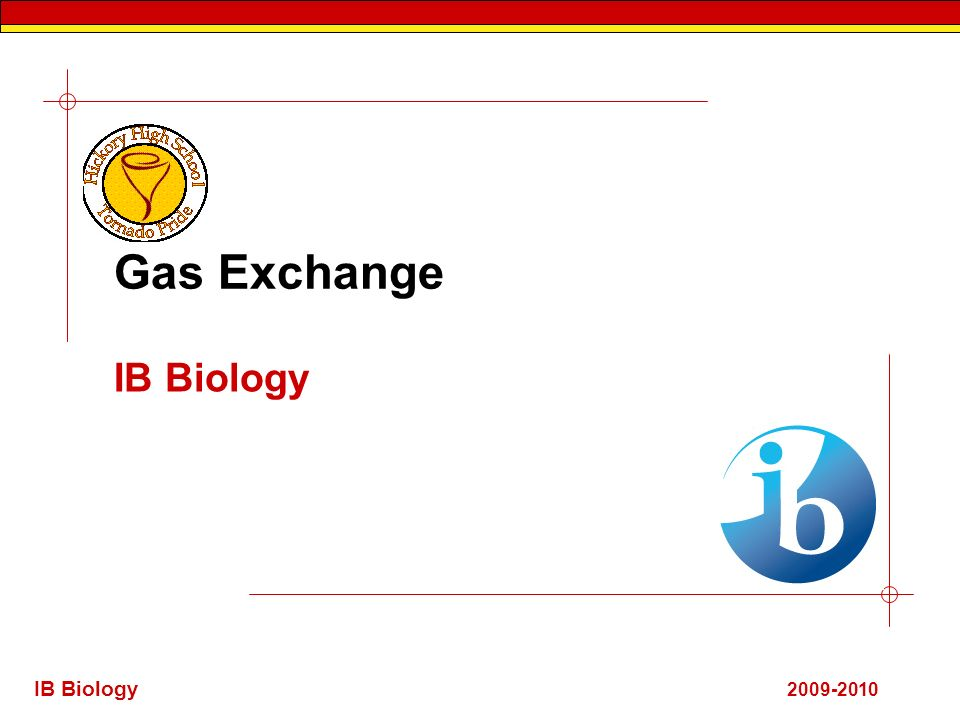 IB Biology 2009-2010 Gas Exchange IB Biology