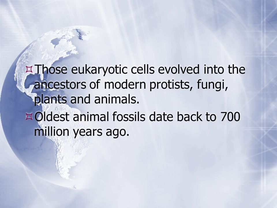Those eukaryotic cells evolved into the ancestors of modern protists, fungi, plants and animals. Oldest animal fossils date back to 700 million years