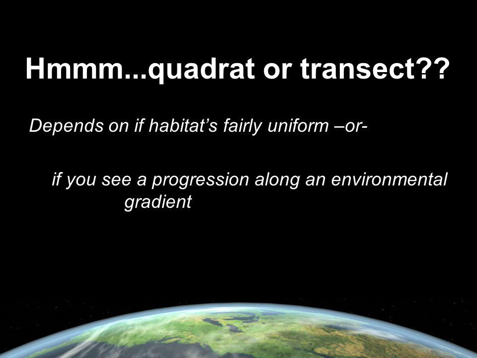 Hmmm...quadrat or transect?.