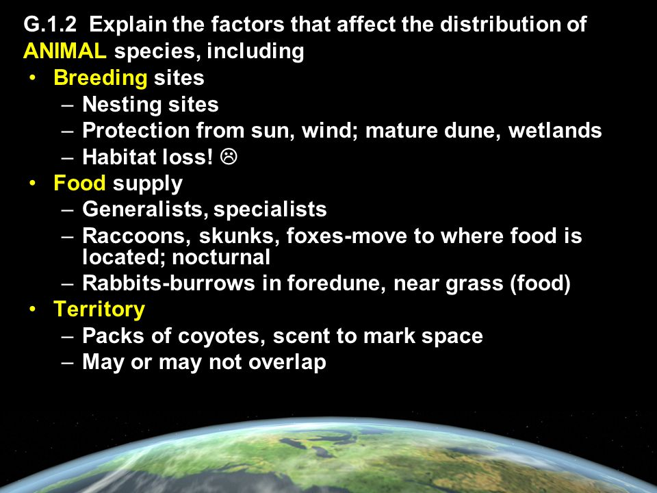 G.1.2 Explain the factors that affect the distribution of ANIMAL species, including Breeding sites –Nesting sites –Protection from sun, wind; mature dune, wetlands –Habitat loss.