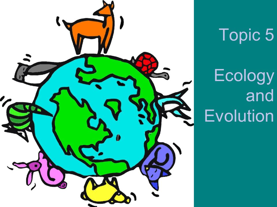 G3 Impacts of humans on ecosystems G.3.2 Analyze the biodiversity of the two local communities using the Simpson index.