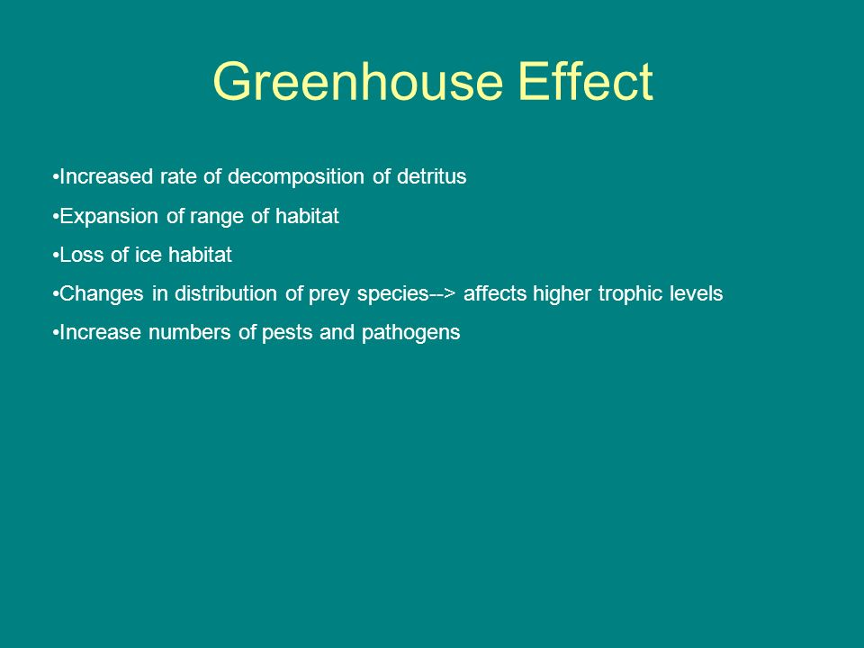 Greenhouse Effect Increased rate of decomposition of detritus Expansion of range of habitat Loss of ice habitat Changes in distribution of prey specie