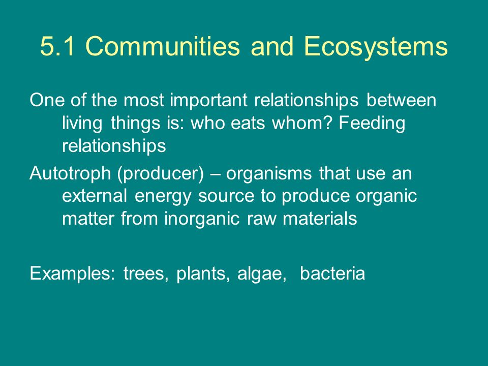 5.1 Communities and Ecosystems Deduce the trophic level of organisms in a food chain and a food web.