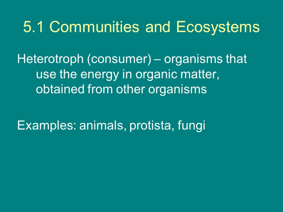 5.1 Communities and Ecosystems Heterotroph (consumer) – organisms that use the energy in organic matter, obtained from other organisms Examples: anima