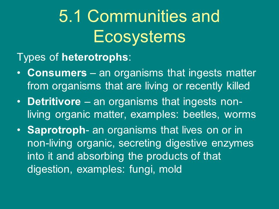 G1 Community Ecology G.1.8 Fundamental vs Realized Niches Fundamental = where the species is designed to live the best Realized = where the species actually resides because of competition