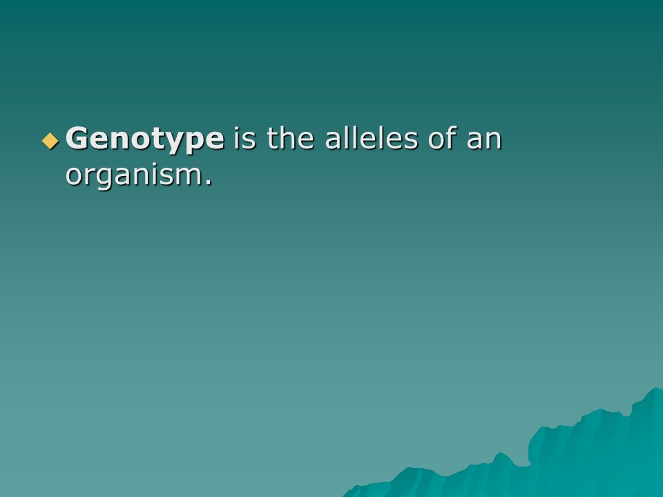 Genotype is the alleles of an organism. Genotype is the alleles of an organism.