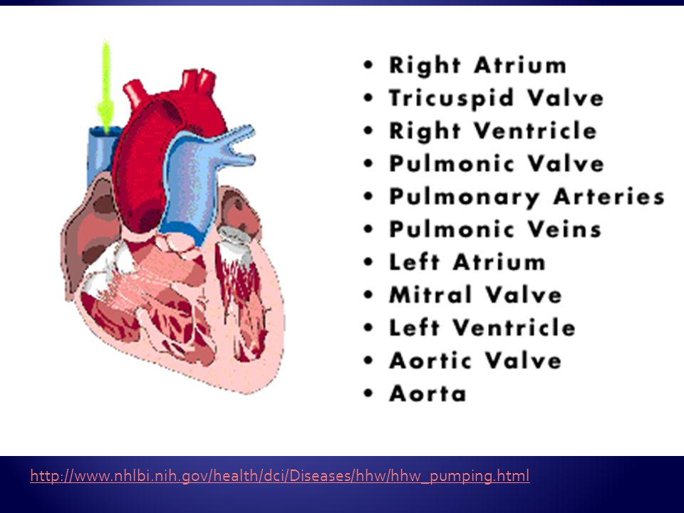 http://www.nhlbi.nih.gov/health/dci/Diseases/hhw/hhw_pumping.html