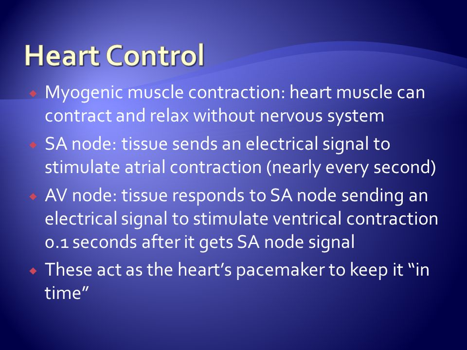 Myogenic muscle contraction: heart muscle can contract and relax without nervous system SA node: tissue sends an electrical signal to stimulate atrial contraction (nearly every second) AV node: tissue responds to SA node sending an electrical signal to stimulate ventrical contraction 0.1 seconds after it gets SA node signal These act as the hearts pacemaker to keep it in time