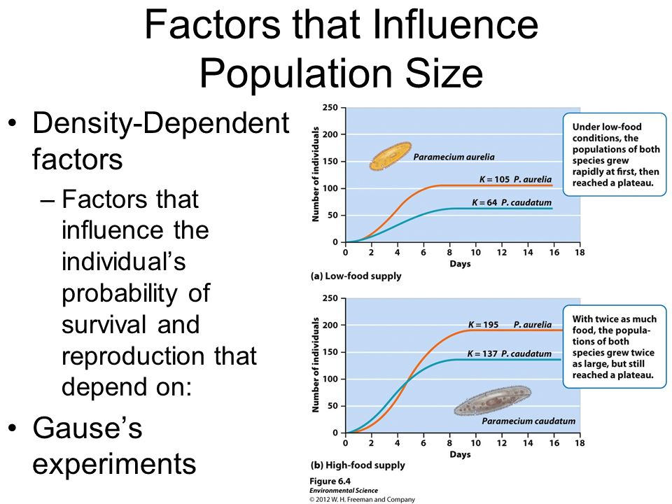 Factors that Influence Population Size Density-Dependent factors –Factors that influence the individuals probability of survival and reproduction that