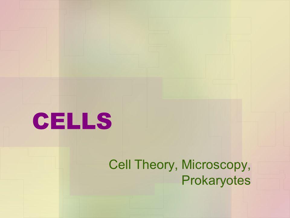 CELLS Cell Theory, Microscopy, Prokaryotes