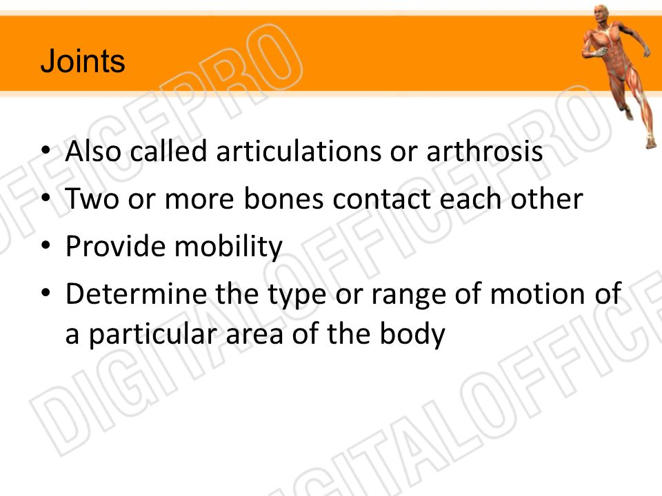 Joints Also called articulations or arthrosis Two or more bones contact each other Provide mobility Determine the type or range of motion of a particu