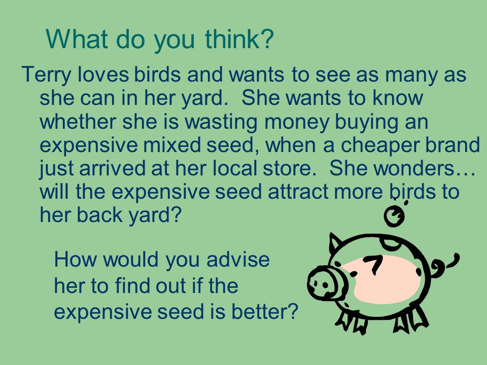 What do you think? Terry loves birds and wants to see as many as she can in her yard. She wants to know whether she is wasting money buying an expensi