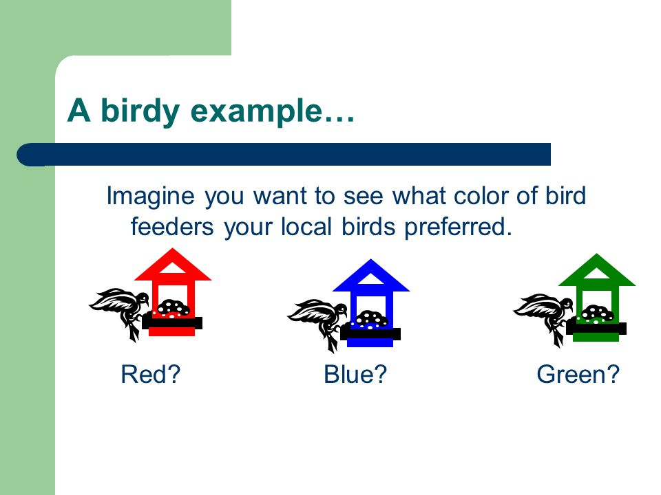 A birdy example… Imagine you want to see what color of bird feeders your local birds preferred. Red? Blue? Green?