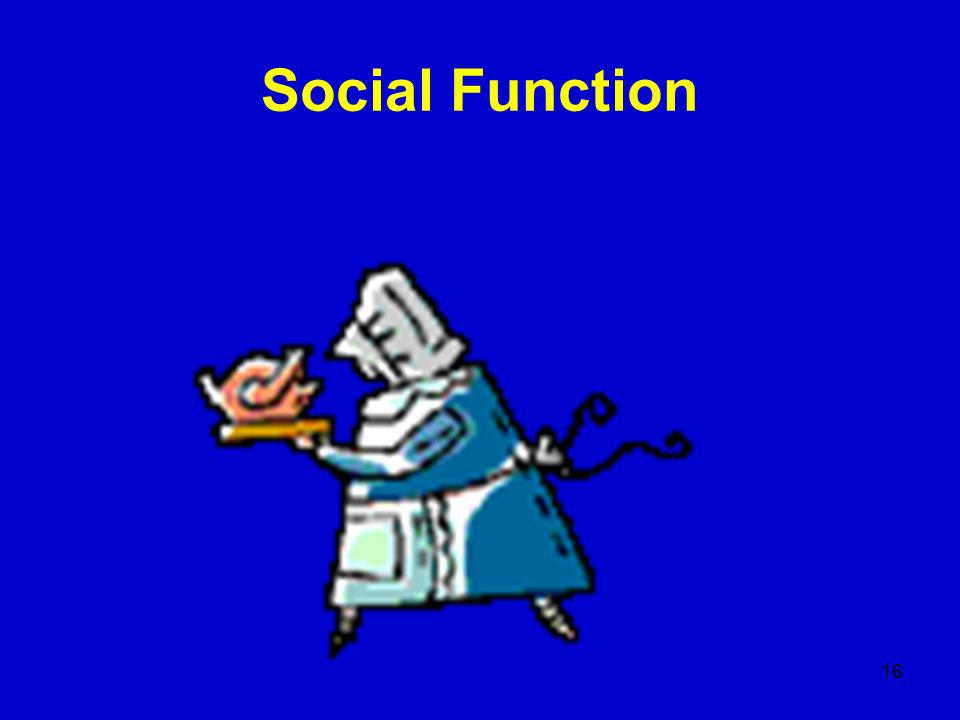 16 Social Function