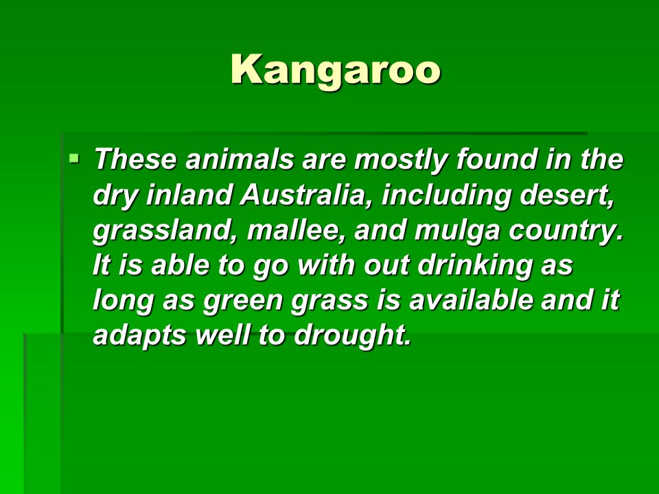 Kangaroo These animals are mostly found in the dry inland Australia, including desert, grassland, mallee, and mulga country. It is able to go with out