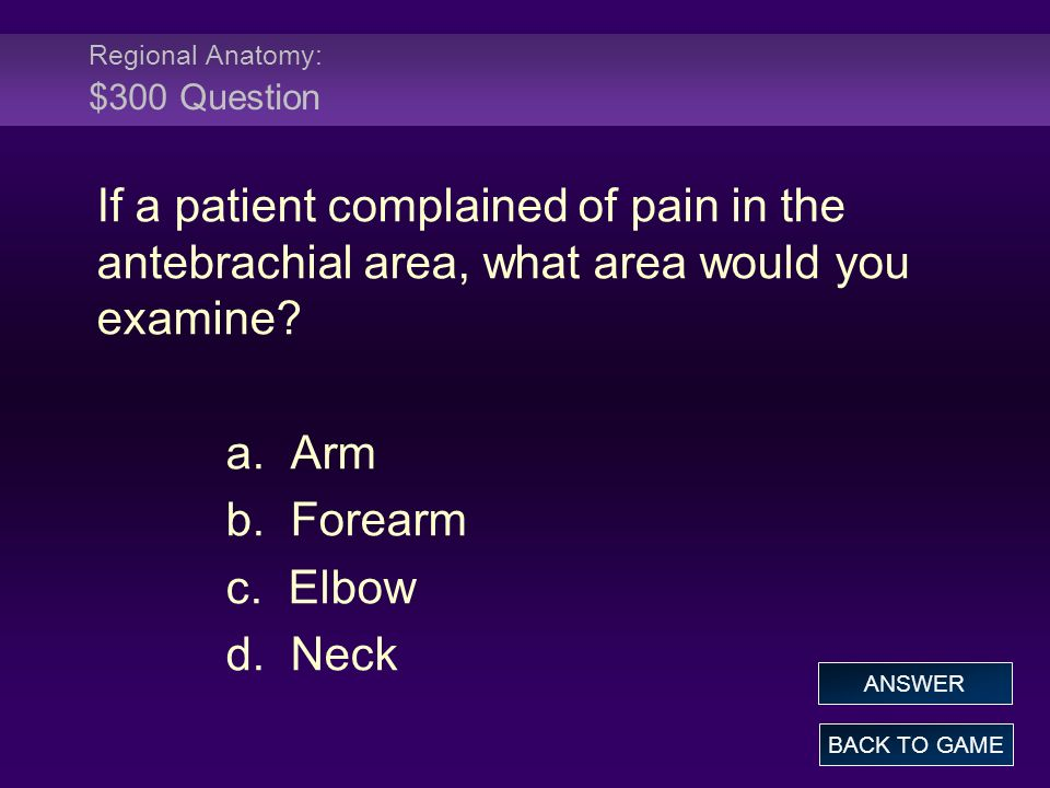 Regional Anatomy: $300 Question If a patient complained of pain in the antebrachial area, what area would you examine? a. Arm b. Forearm c. Elbow d. N