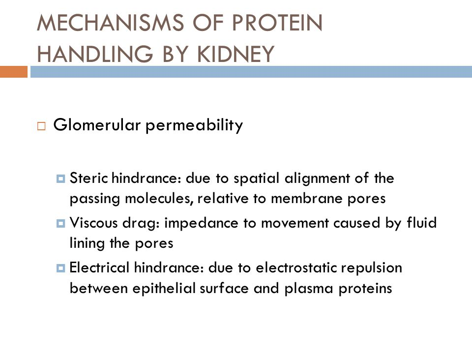 MECHANISMS OF PROTEIN HANDLING BY KIDNEY Glomerular permeability Steric hindrance: due to spatial alignment of the passing molecules, relative to memb