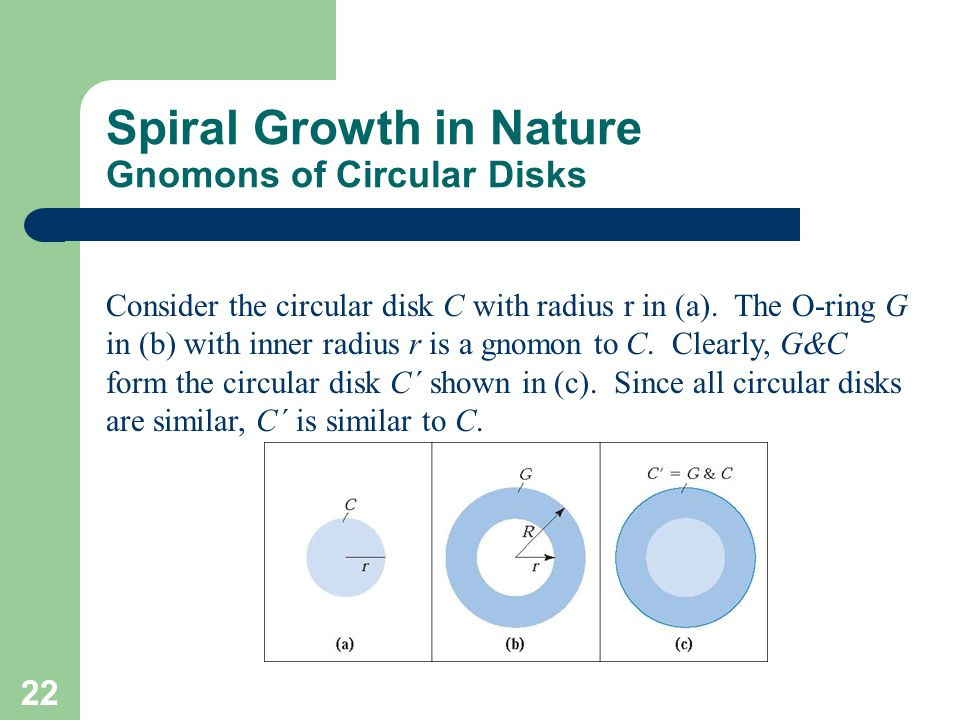 22 Spiral Growth in Nature Gnomons of Circular Disks Consider the circular disk C with radius r in (a). The O-ring G in (b) with inner radius r is a g