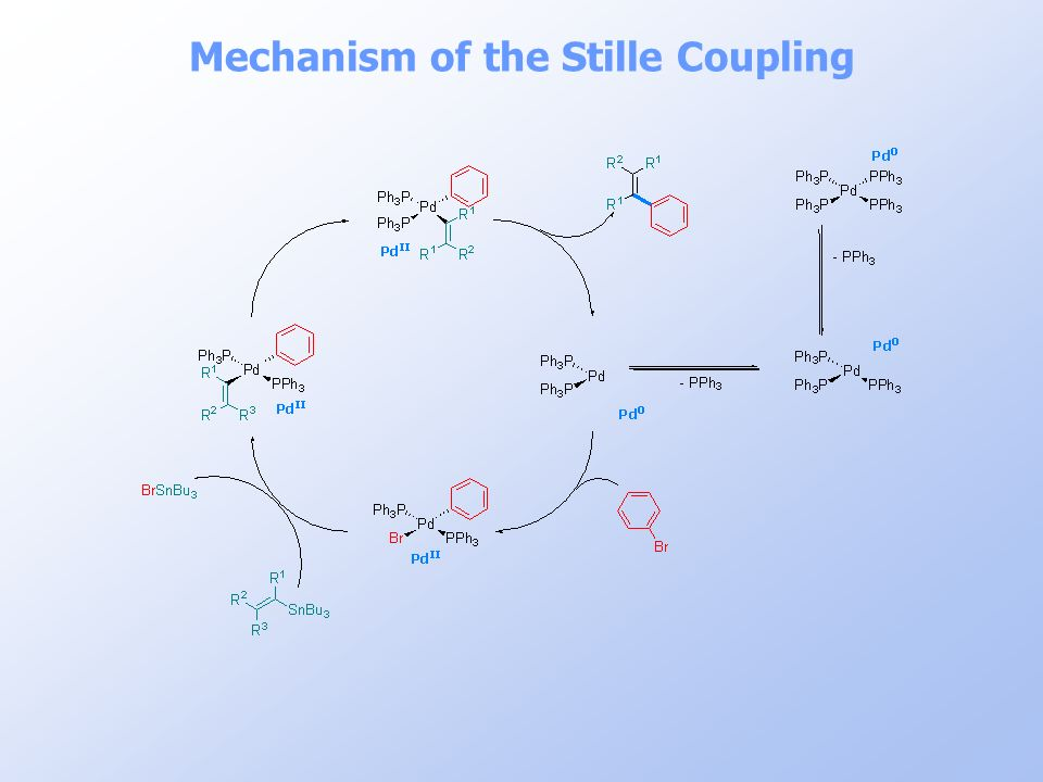 Mechanism of the Stille Coupling