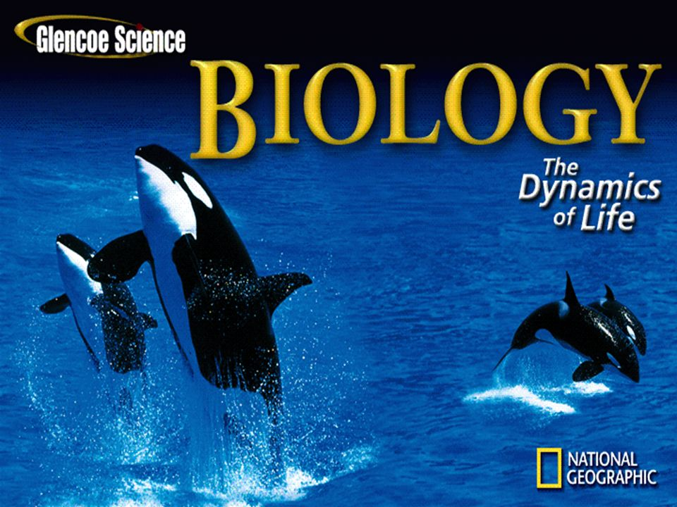 Section 2.1 Summary – pages 35 - 45 Symbiosis The relationship in which there is a close and permanent association between organisms of different species is called symbiosis.