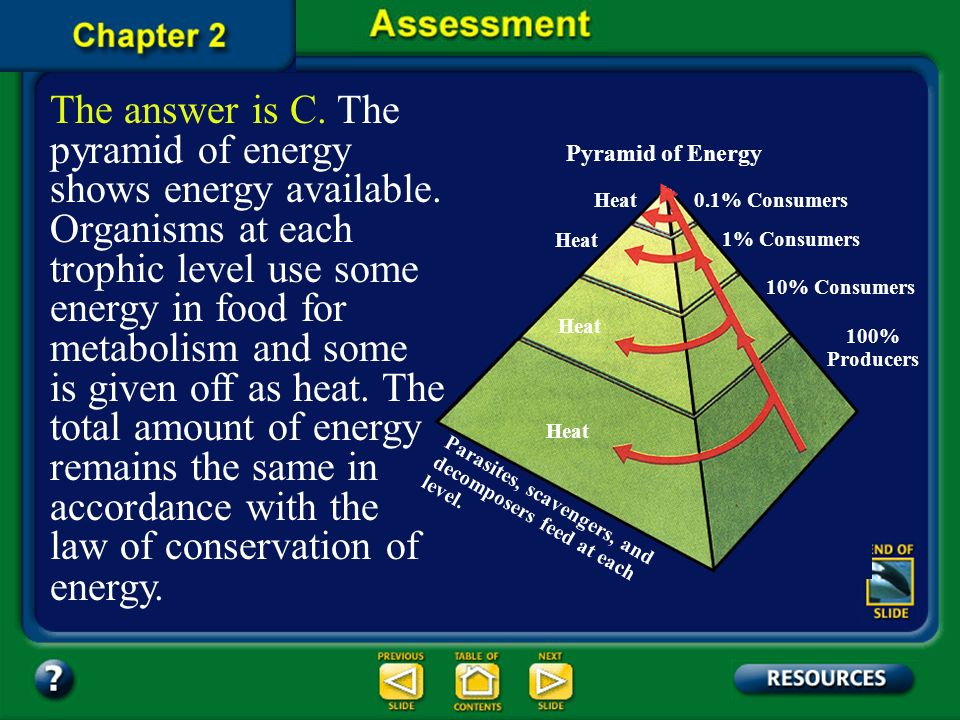 Question 4 Which of the following models best illustrates heat released at each trophic level of an ecosystem? D. pyramid of biomass C. pyramid of ene