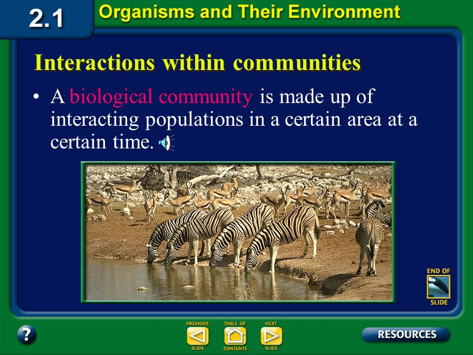 Section 2.1 Summary – pages 35 - 45 Interactions within communities Just as a population is made up of individuals, several different populations make