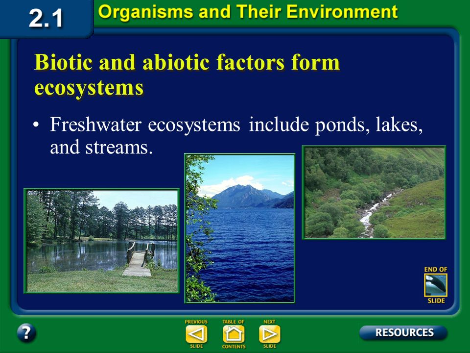 Section 2.1 Summary – pages 35 - 45 Biotic and abiotic factors form ecosystems Aquatic ecosystems occur in both fresh- and saltwater forms. Table 2.1