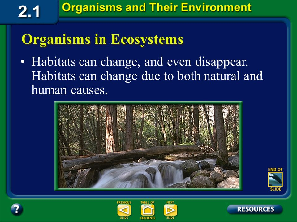 Section 2.1 Summary – pages 35 - 45 Organisms in Ecosystems A habitat is the place where an organism lives out its life.