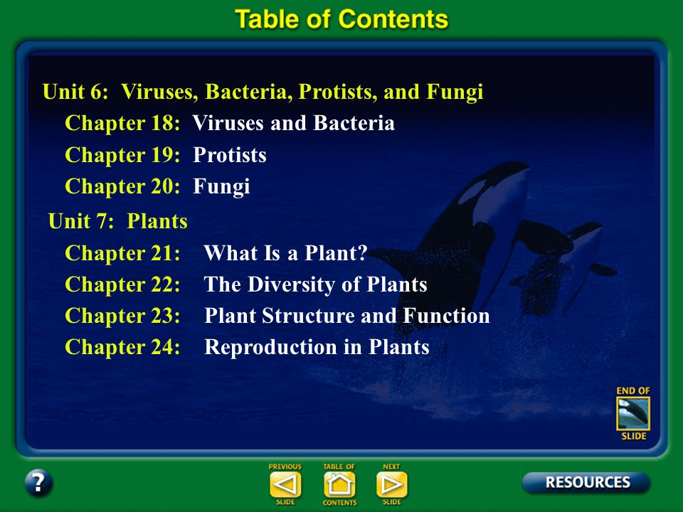Table of Contents – pages iv-v Unit 6: Viruses, Bacteria, Protists, and Fungi Chapter 18: Viruses and Bacteria Chapter 19: Protists Chapter 20: Fungi Unit 7: Plants Chapter 21: What Is a Plant.