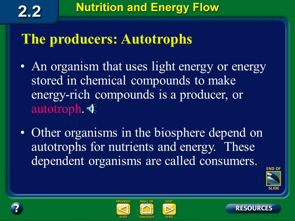 Section 2.2 Summary – pages 46 - 57 The producers: Autotrophs The ultimate source of the energy for life is the sun. Plants use the suns energy to man