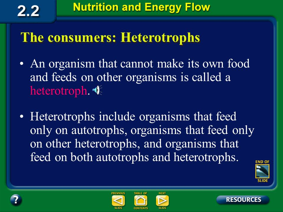 Section 2.2 Summary – pages 46 - 57 The producers: Autotrophs Other organisms in the biosphere depend on autotrophs for nutrients and energy. These de