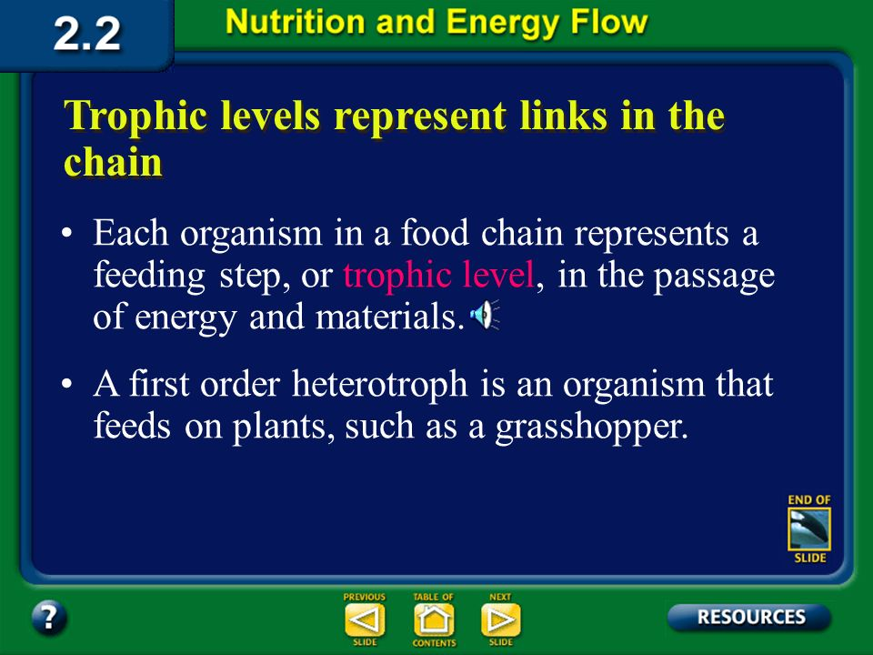 Section 2.2 Summary – pages 46 - 57 Food chains: Pathways for matter and energy Most food chains consist of two, three, or four transfers. The amount