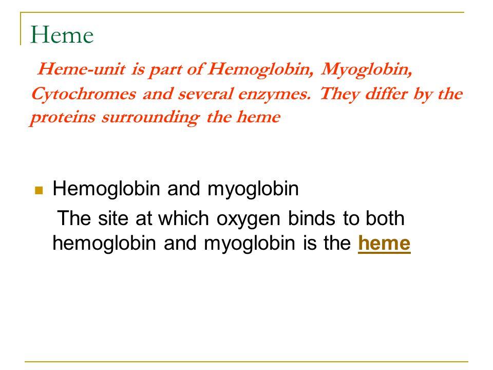 Heme Heme-unit is part of Hemoglobin, Myoglobin, Cytochromes and several enzymes. They differ by the proteins surrounding the heme Hemoglobin and myog