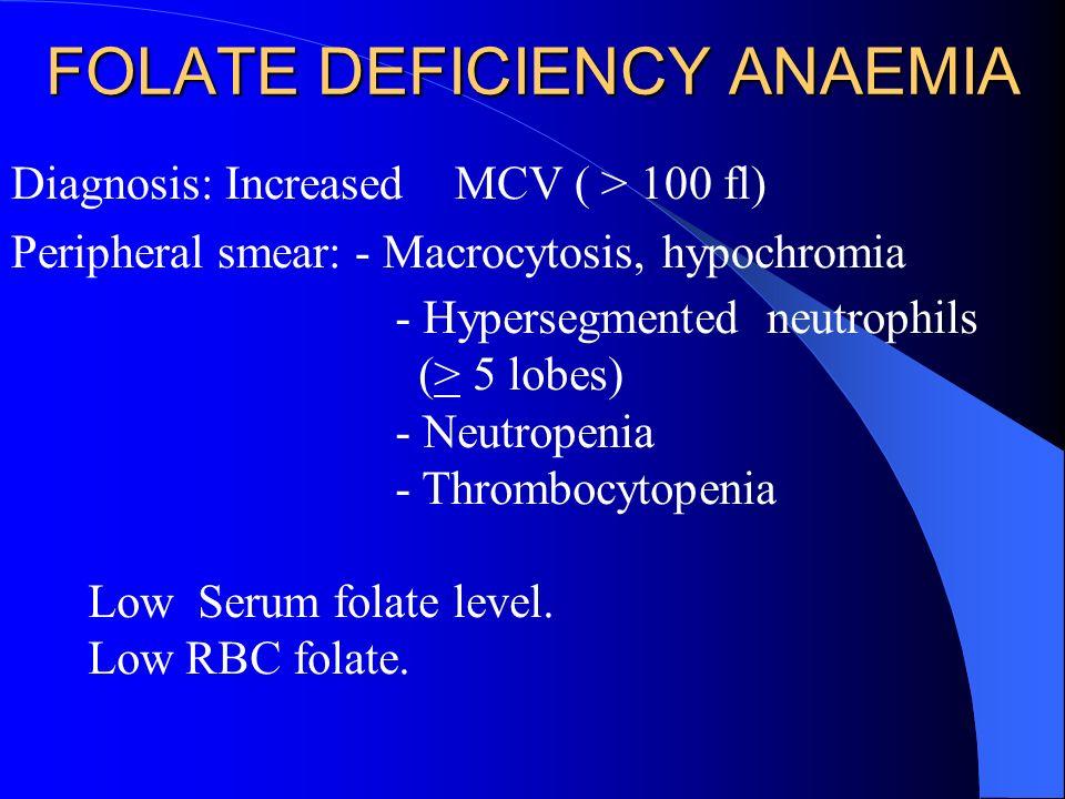FOLATE DEFICIENCY ANAEMIA Diagnosis: Increased MCV ( > 100 fl) Peripheral smear: - Macrocytosis, hypochromia - Hypersegmented neutrophils (> 5 lobes)