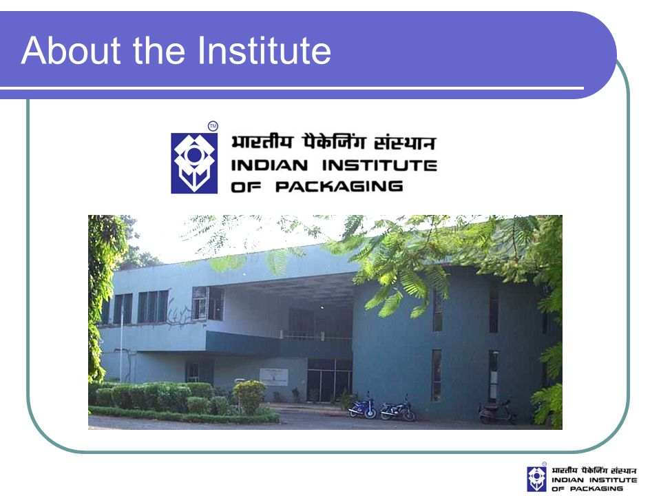 About the Institute