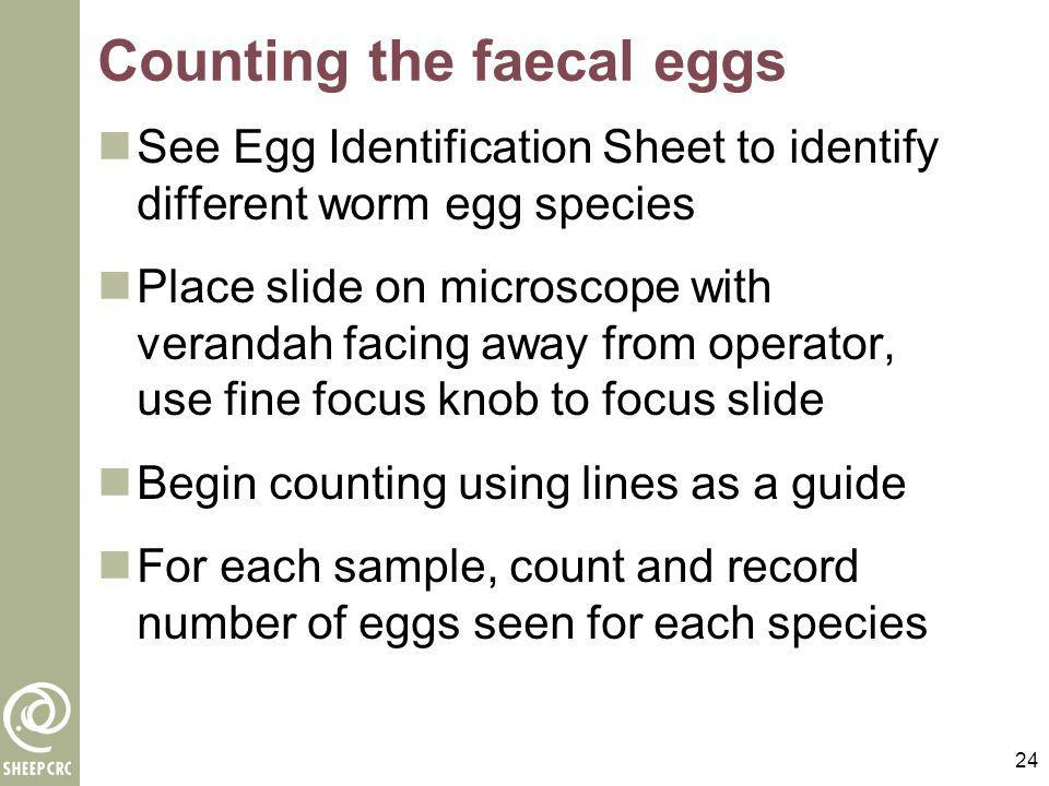 24 Counting the faecal eggs See Egg Identification Sheet to identify different worm egg species Place slide on microscope with verandah facing away fr