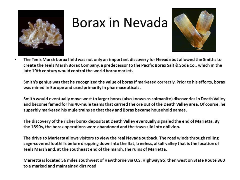 Borax in Nevada The Teels Marsh borax field was not only an important discovery for Nevada but allowed the Smiths to create the Teels Marsh Borax Comp