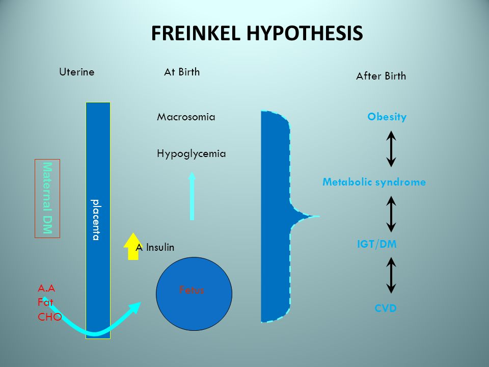 FREINKEL HYPOTHESIS Uterine After Birth Maternal DM placenta A.A Fat CHO At Birth Macrosomia Hypoglycemia Fetus A Insulin Obesity Metabolic syndrome C
