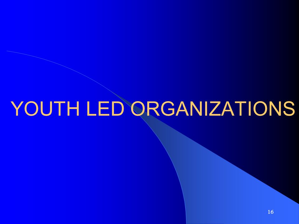 16 YOUTH LED ORGANIZATIONS