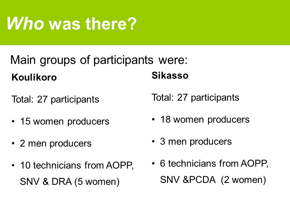 Main groups of participants were: Who was there? Koulikoro Total: 27 participants 15 women producers 2 men producers 10 technicians from AOPP, SNV & D