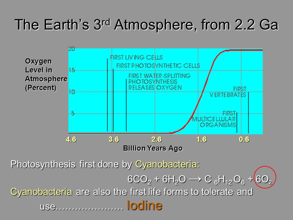 The Earths 3 rd Atmosphere, from 2.2 Ga Oxygen Level in Atmosphere(Percent) 4.6 3.6 2.6 1.6 0.6 Billion Years Ago Billion Years Ago Photosynthesis fir