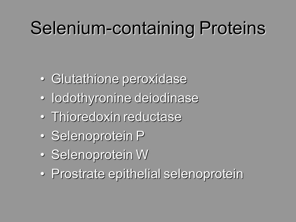 Selenium-containing Proteins Glutathione peroxidaseGlutathione peroxidase Iodothyronine deiodinaseIodothyronine deiodinase Thioredoxin reductaseThiore