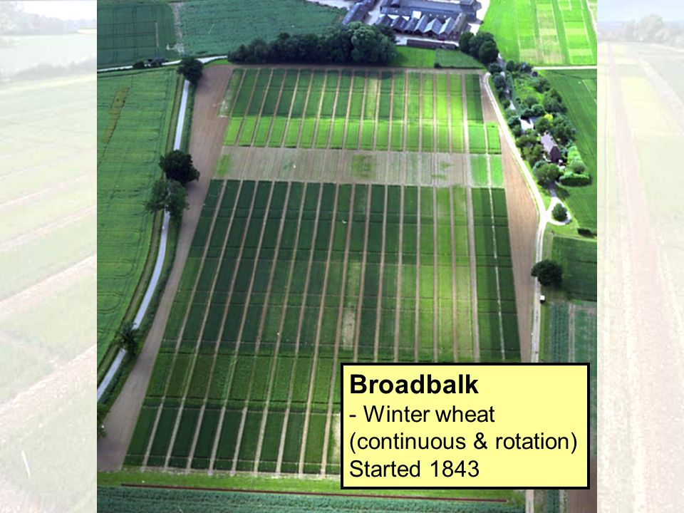 Broadbalk - Winter wheat (continuous & rotation) Started 1843