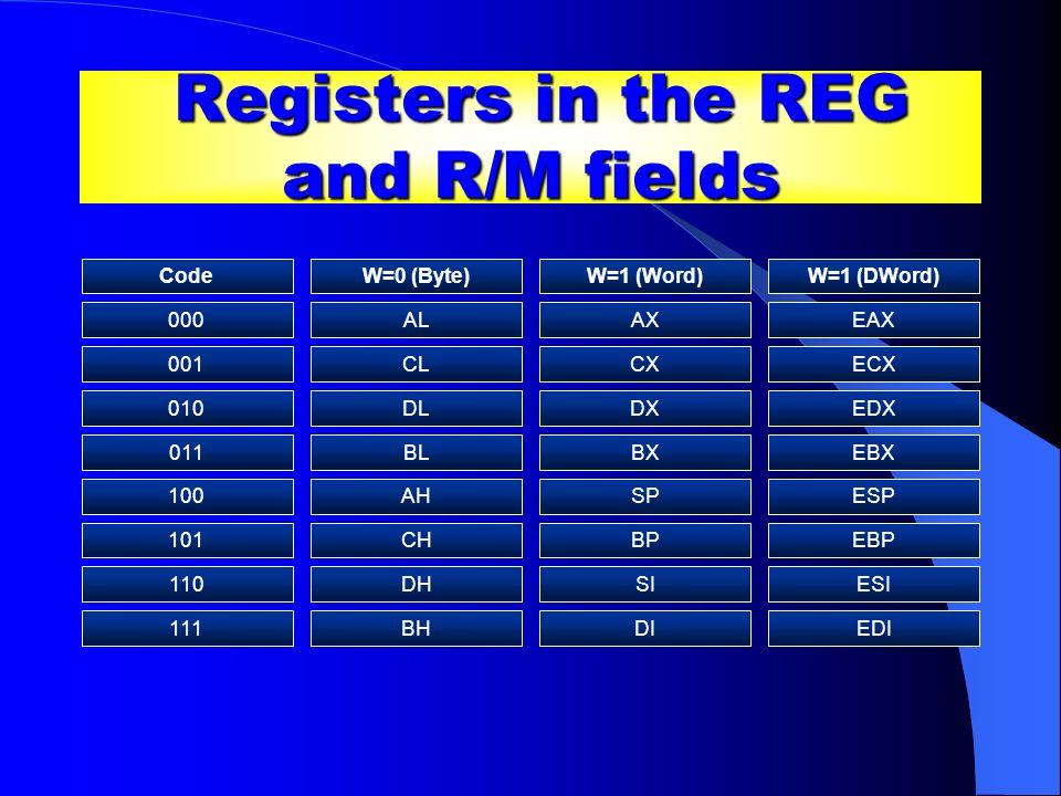 Registers in the REG and R/M fields Registers in the REG and R/M fields CodeW=0 (Byte)W=1 (Word)W=1 (DWord) 000ALAXEAX 001CLCXECX 010DLDXEDX 011BLBXEB