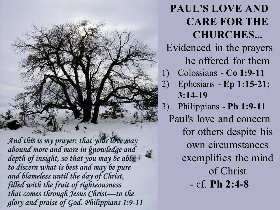 PAUL S LOVE AND CARE FOR THE CHURCHES...